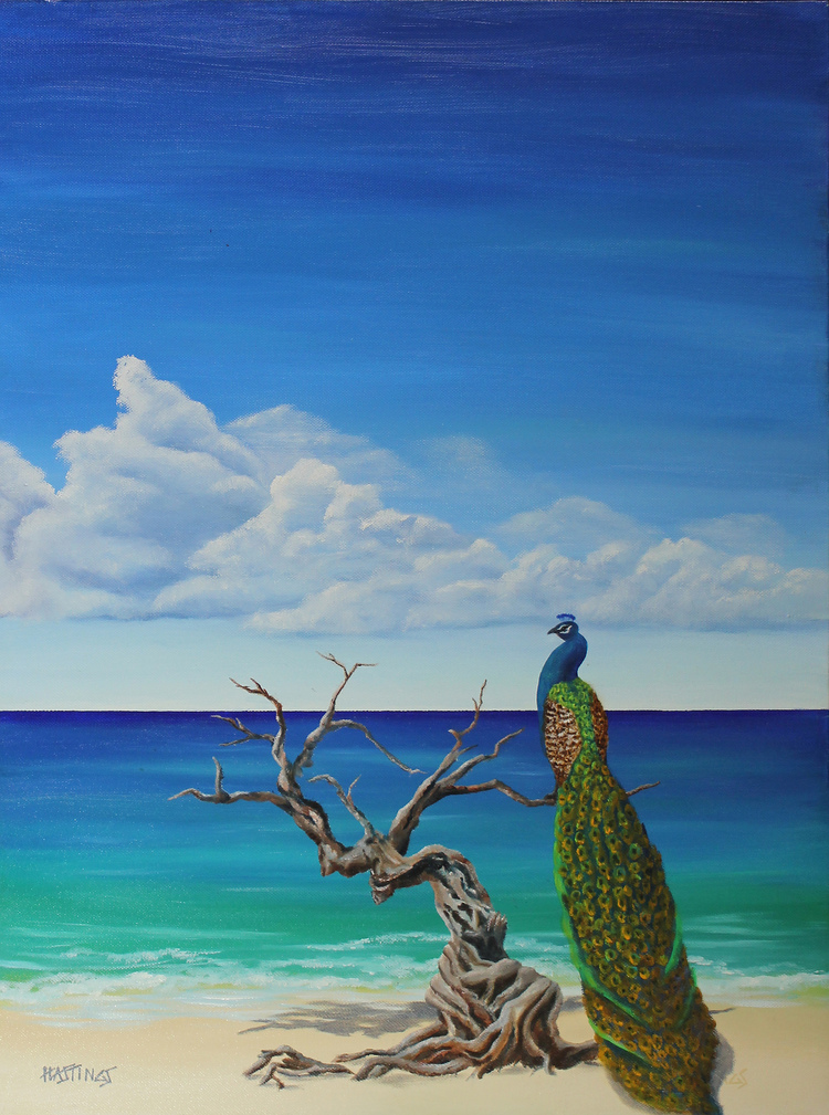 cock of the boardwalk 24 x 18